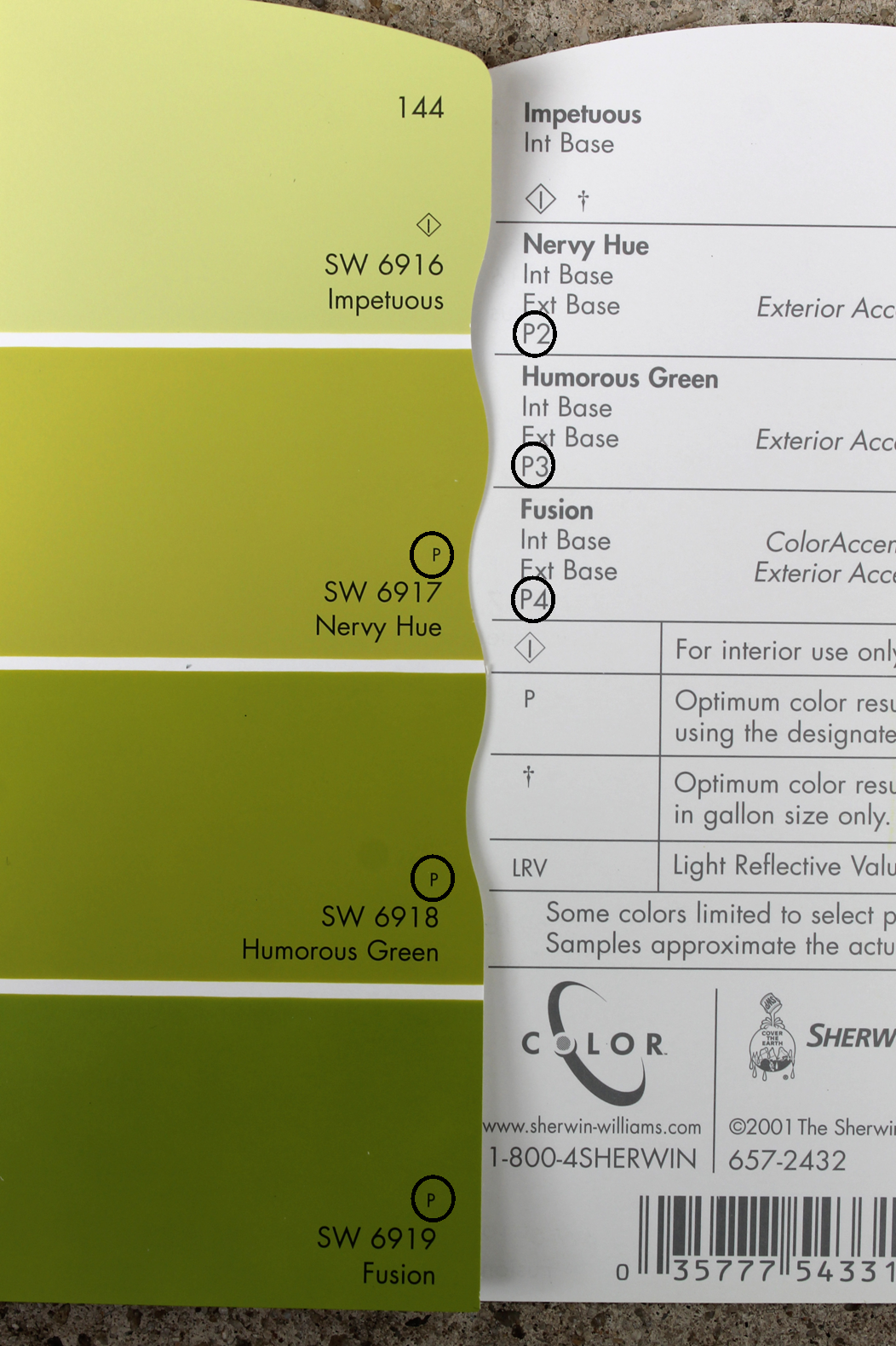 The ragged wren white primer vs gray primer i was surprised at the level of tinted primer that was needed for the colors like how a lime green color needed a deep gray primer nvjuhfo Image collections