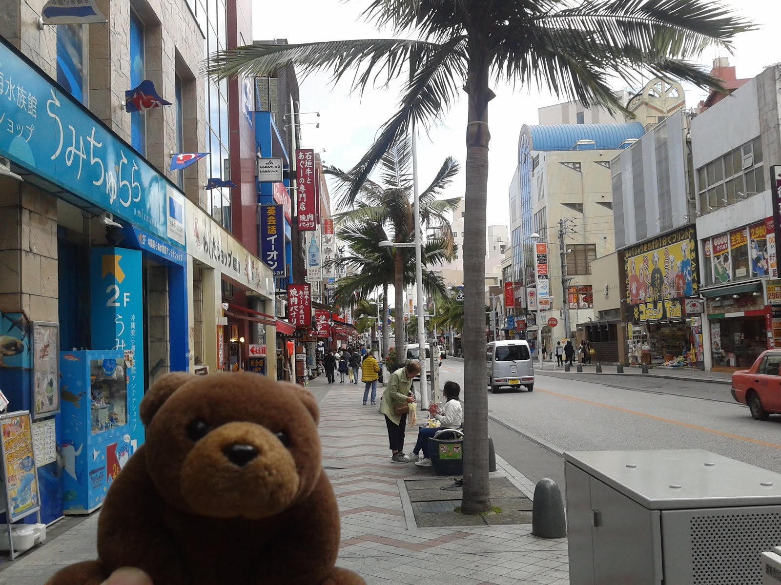 Teddy in Naha, Okinawa, Japan
