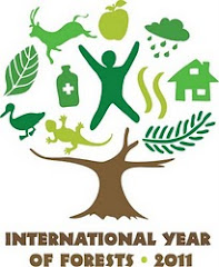 2011: Ao internacional de los bosques