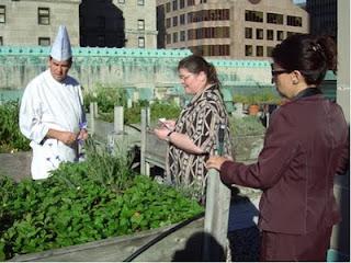 Im Dachgarten des Royal York Hotels in Toronto