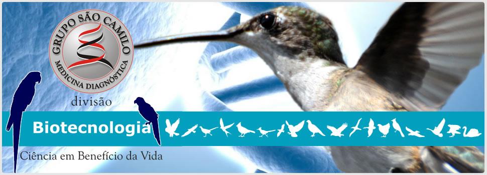 Grupo São Camilo - Sexagem de Aves pelo DNA