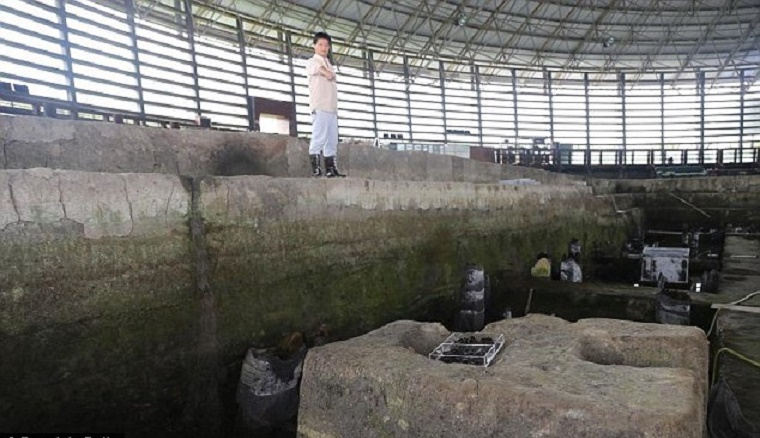 Tea cultivation in China began earlier than thought