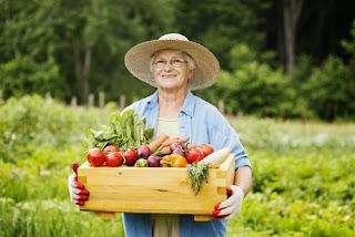 zdrowe jedzenie, dieta dla seniora, serafjogin, zdrowie