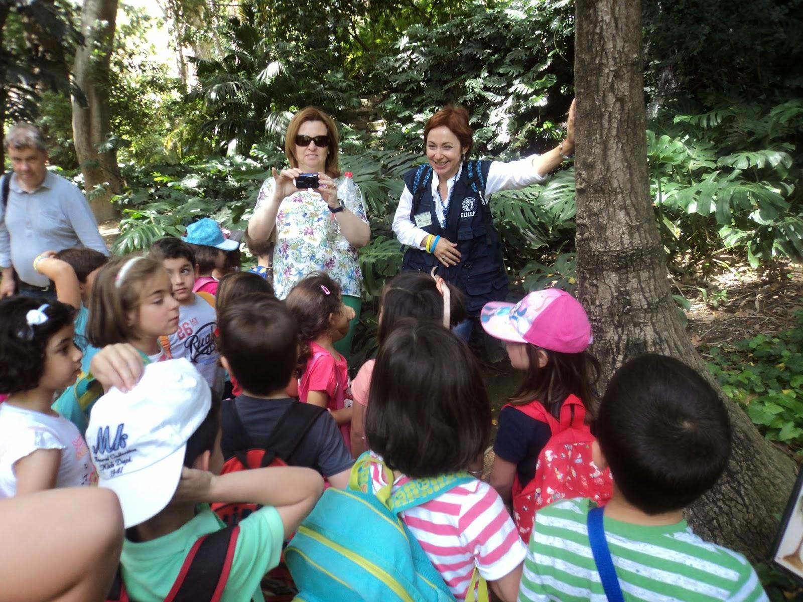 El aula de eugenia for El jardin de eugenia