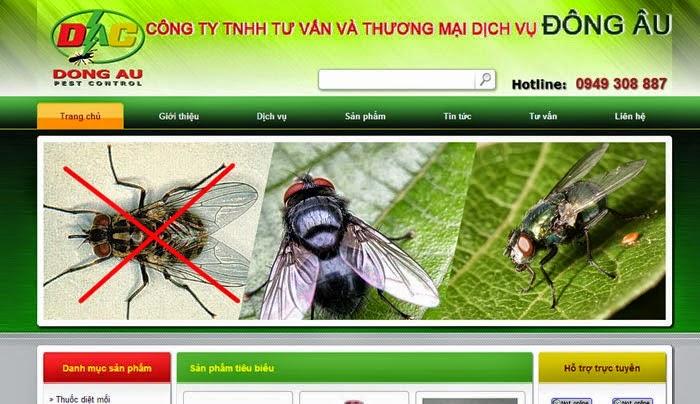 dịch vụ seo website giá rẻ nhất - mẫu 06