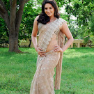 Ragini Dwivedi in Saree Cute Photos