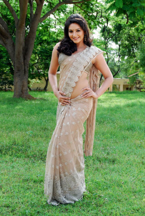 film model ragini dwivedi in saree glamour  images