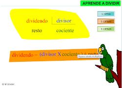 DIVISIONES 1
