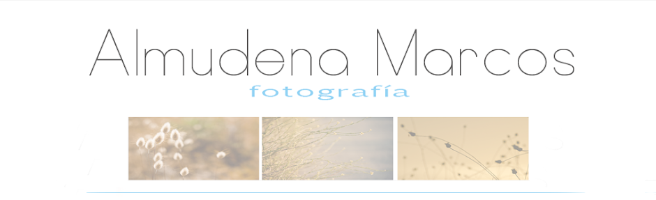 Almudena Marcos Fotografía
