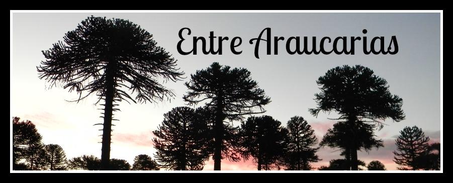 Entre Araucarias