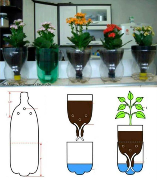 mini jardim reciclado:Eterno aprendiz: Ideias criativas e sustentáveis