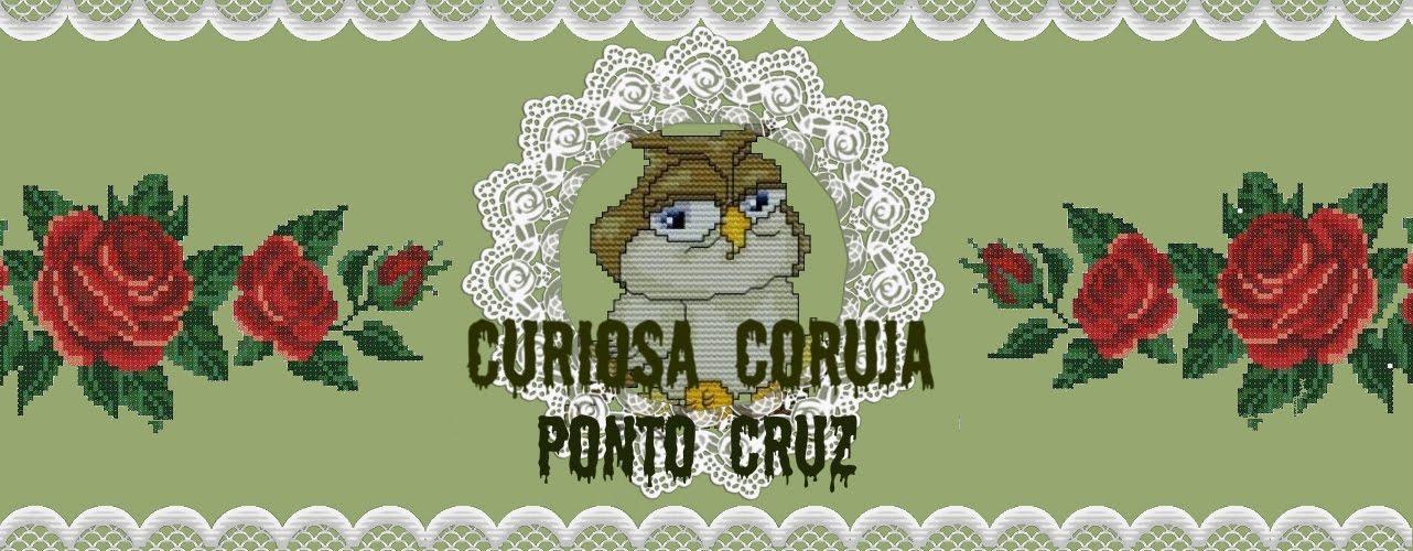 CURIOSA CORUJA PONTO CRUZ