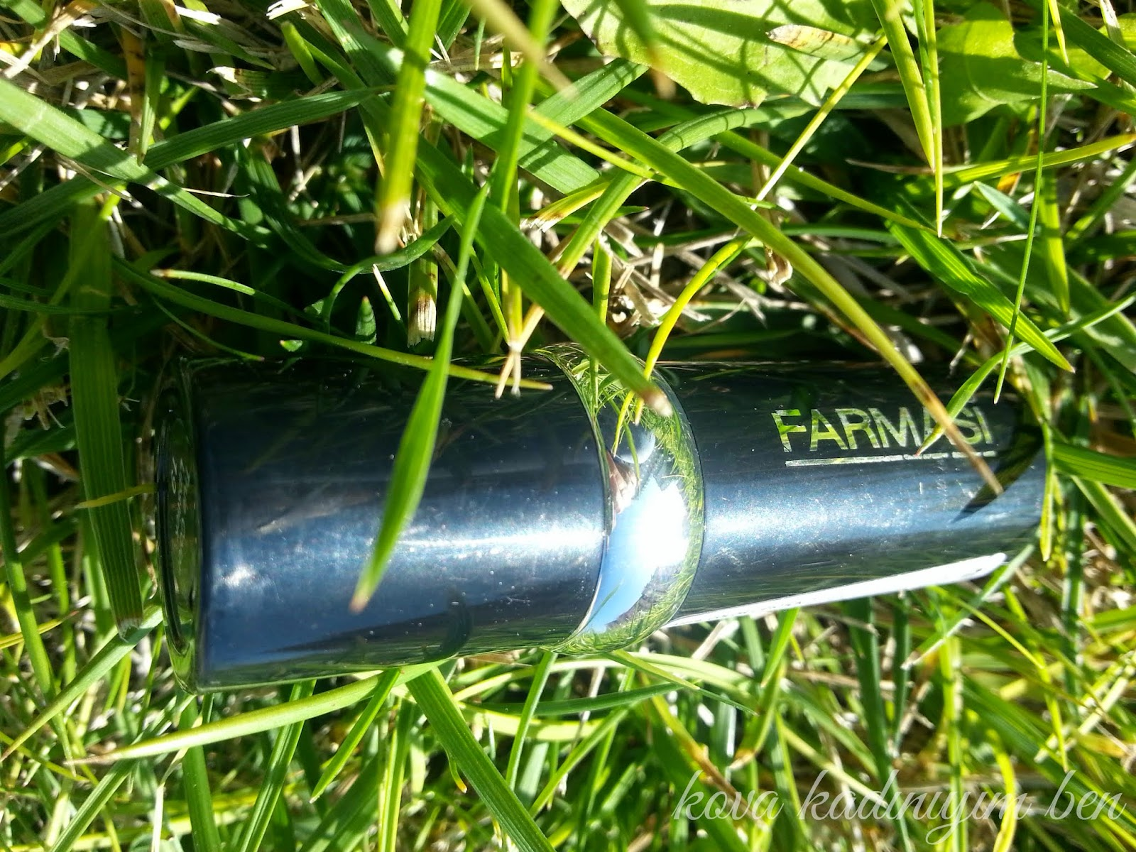 Farmasi True Color Lipstick