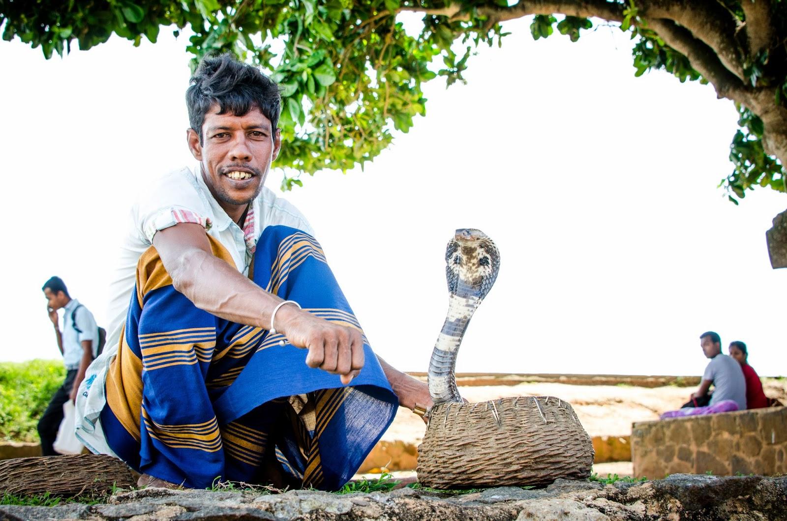 Sri Lanka snake charmer