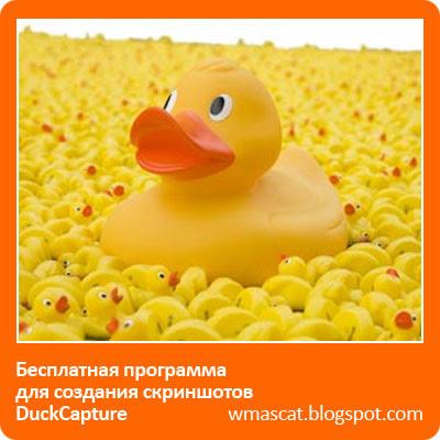 Бесплатная программа для создания скриншотов - DuckCapture