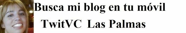 Ayuntamiento de las palmas canarias oficinas servicio canario empleo sce infojobs cursos - Bolsa de trabajo las palmas ...