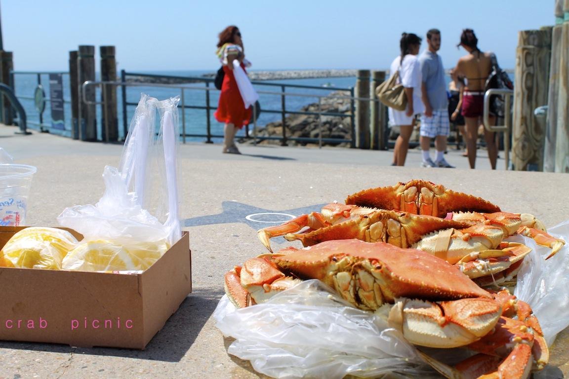 Pisces Parade  Dad U0026 39 S Visit   Redondo Beach Pier