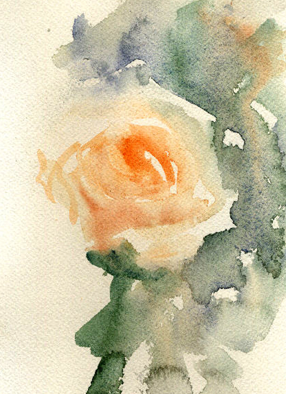 Watercolours with life roses in watercolour for How to paint a rose in watercolour