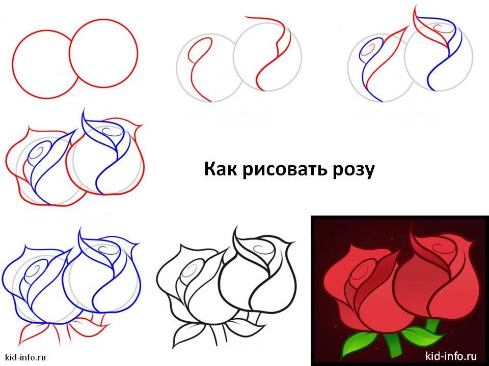 Инструкция пошагового рисования