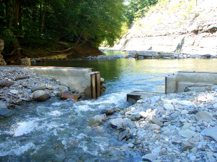 John nagy 39 s steelhead journal 2015 fall steelhead report for Cattaraugus creek fishing report