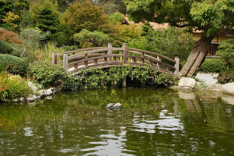 Bridges wooden bridges for Decorative fish pond bridge
