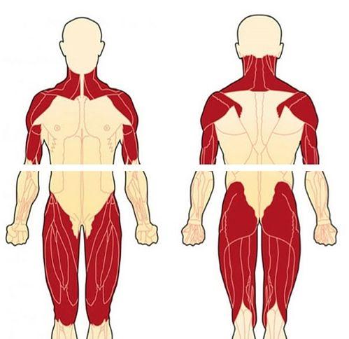 Чем вылечить миозит колена в домашних условиях