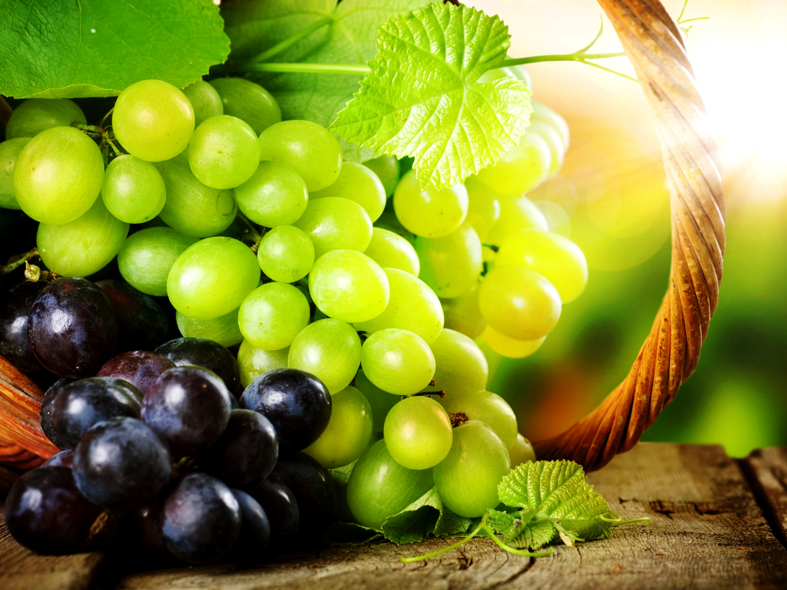 grapes wine hd wallpapers - photo #33