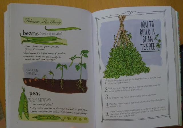 Mtl jtm anatomie de la ferme for Conseil sur les plantes