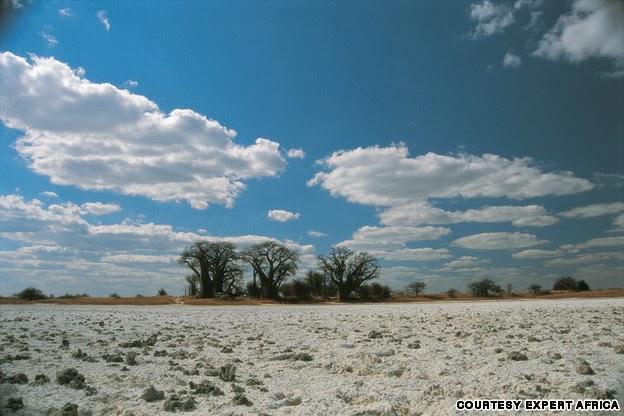 Nxia Pan National Park, Botswana