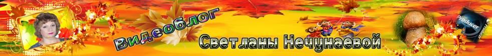 Видеоблог онлайн от Светланы Нечунаевой