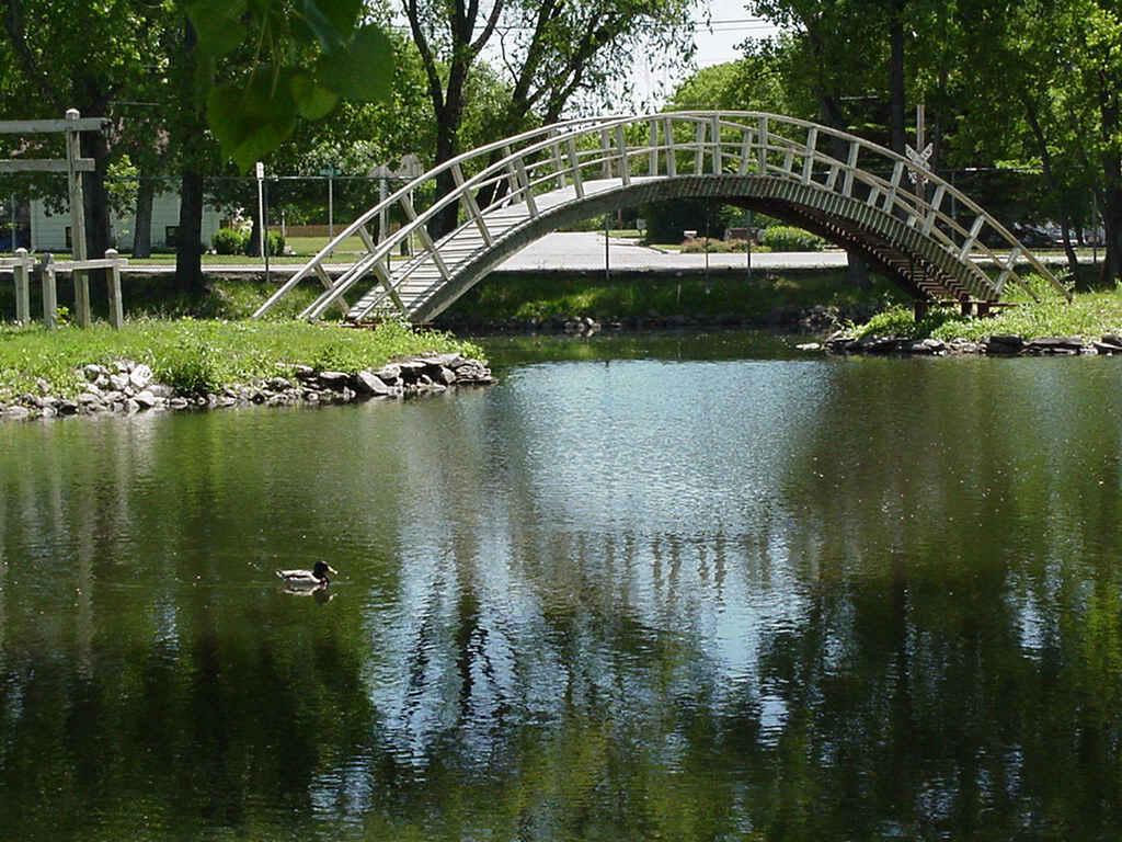 Image for Design duck pond
