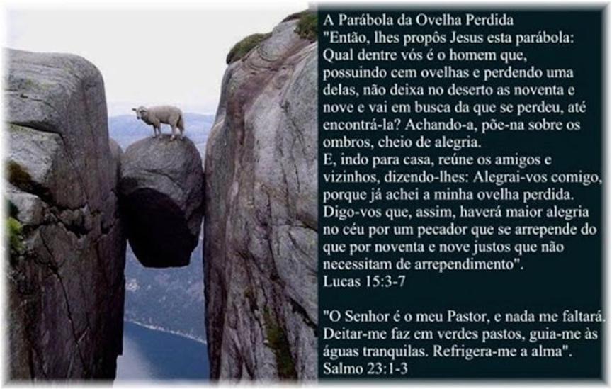 OVELHAS PERDIDAS