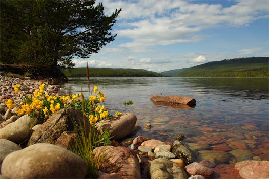 Natureza Sueca