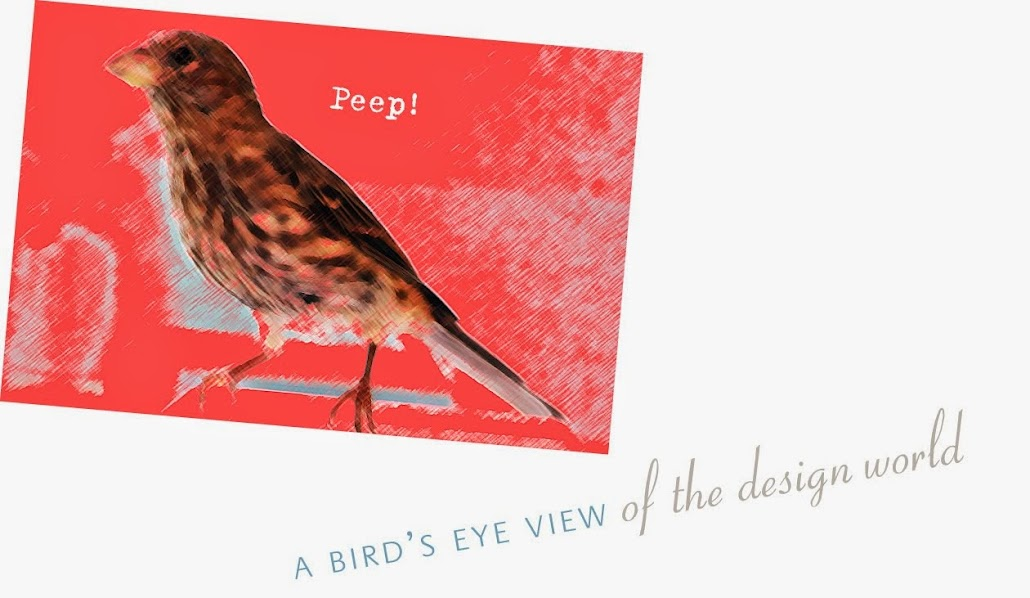 A Bird's Eye View of the Design World