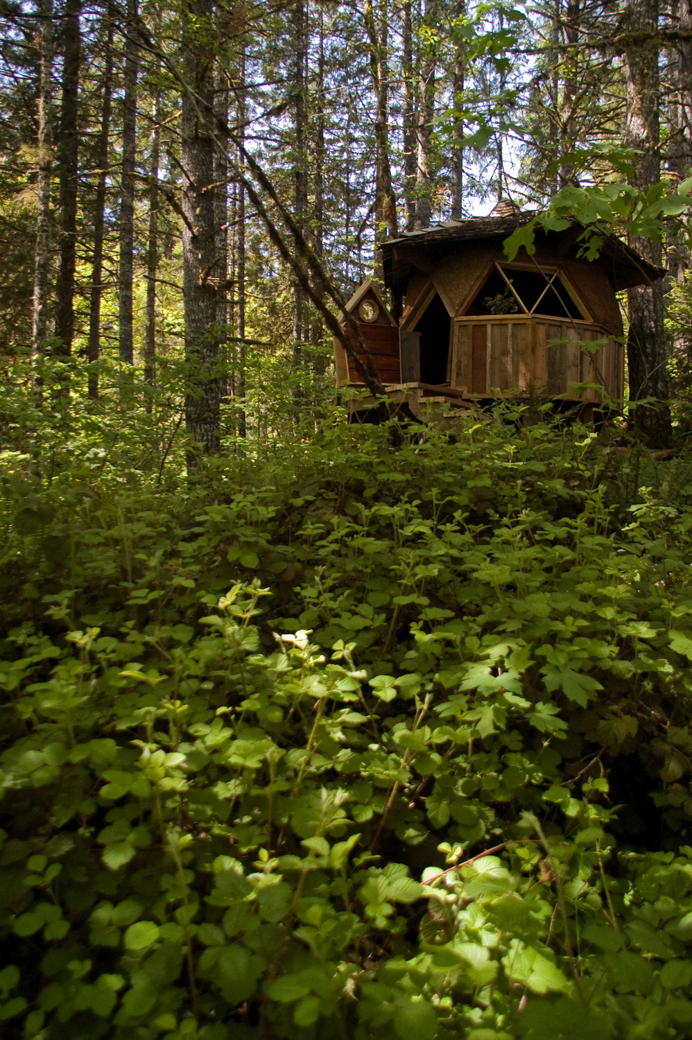 Zome dome eye candy a tiny cabin in the for Building a small cabin in the woods