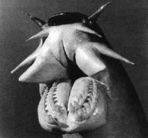 Monstruosa bestia del mar que expulsa baba - lamprea