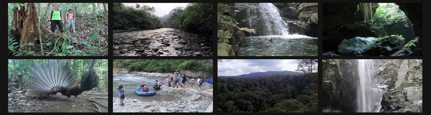 BUKIT LAWANG - ECOTOURISM - ENGINERING ENVIRONMENTAL