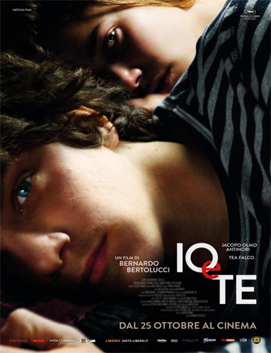 Ver Me and You (Io e te) (2012) Online