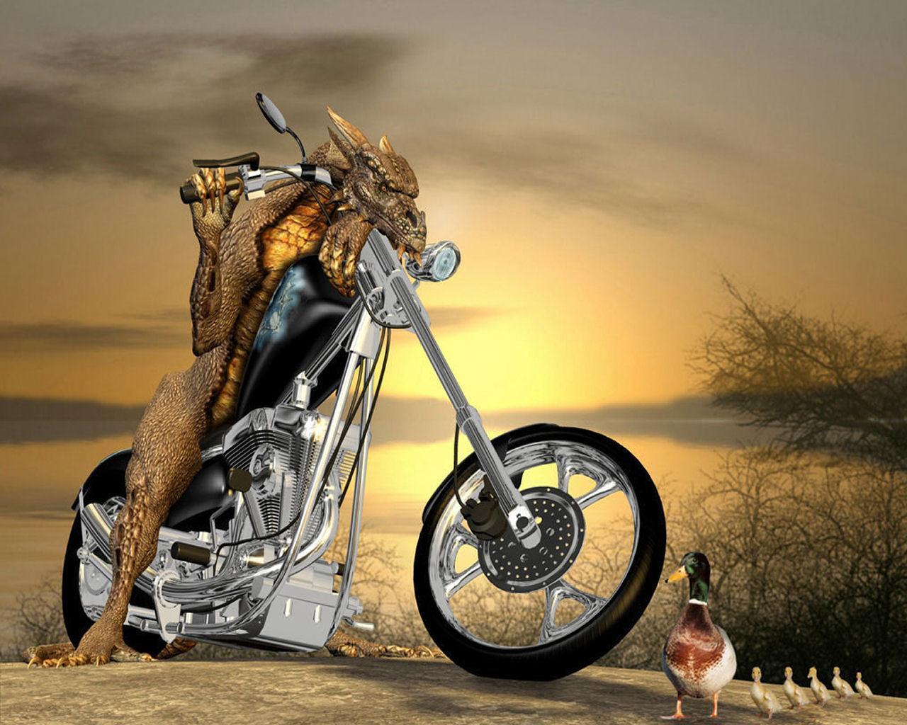 http://4.bp.blogspot.com/-Ft4GWmbQIGg/T7RP64KIw5I/AAAAAAAAB8s/6ZYHZ-A0MmE/s1600/funny-wallpaper-19.jpg