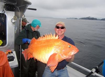 International fishing news 2013 07 for Largest saltwater fish