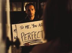 Todo el mundo es perfecto, solo es cuestión de gustos