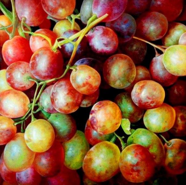 Imágenes Arte Pinturas: Pinturas de bodegones con uvas