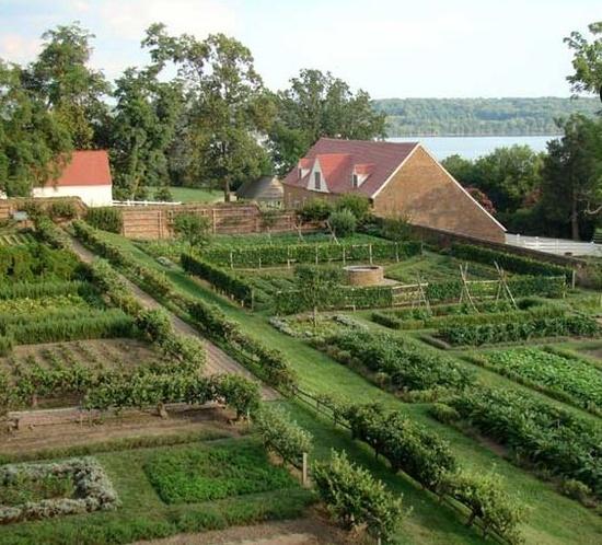 Kitchen garden at Mount Vernon gardens orchards