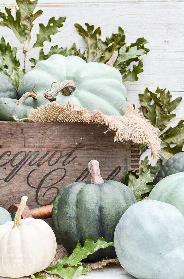 Beautiful pumpkins for fall |  www.andersonandgrant.com