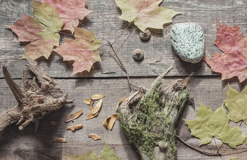 natural Fall decorating; Autumn decorating with nature