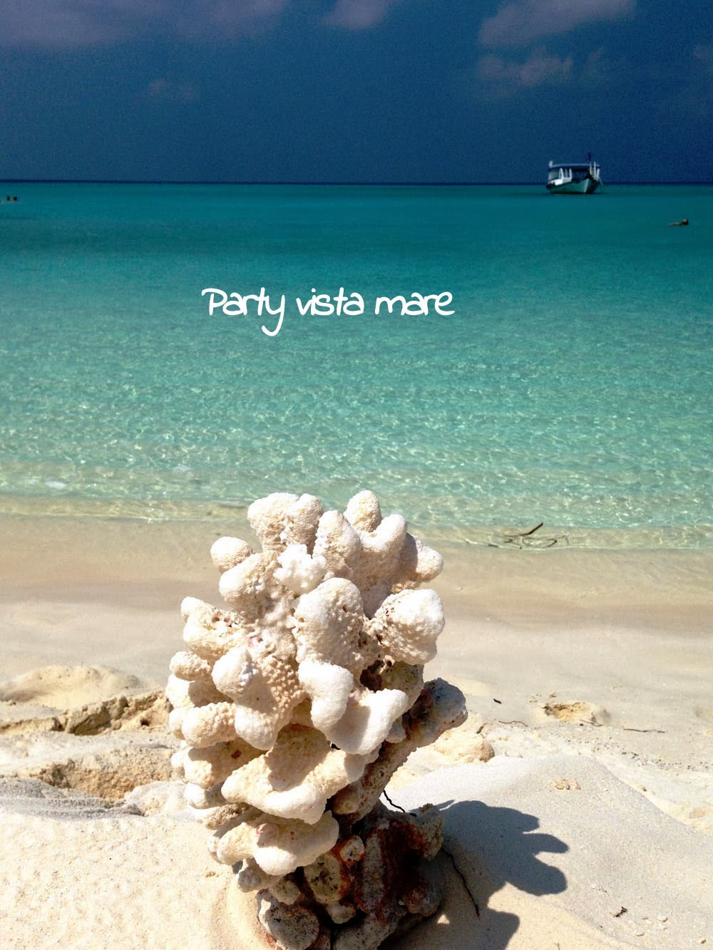 2013_party_vista_mare_2014_sea_blog_blogger_travel_food_maldives