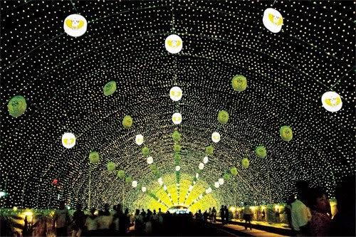 Lễ hội Đom đóm Muju   무주 반딧불 축제