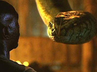 Mr. Movie: Top 10 Favorite Animal Attack movies