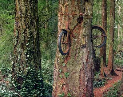 OrangPadi , basikal , kelako , kelakar , funny