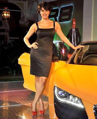 Gul Panag in a Shirt Skirt in a Audi Car Launch Show